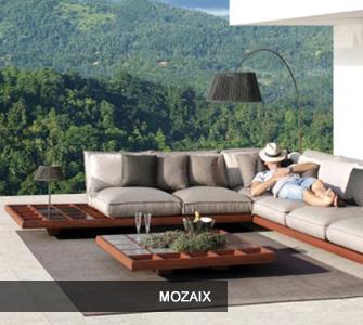 Mozaix